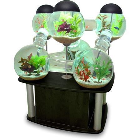 cool-aquarium